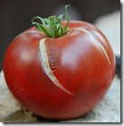 tomato from Flikr